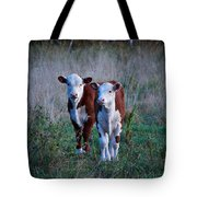 Herefords Tote Bag