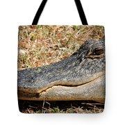 Heres Looking At You Tote Bag