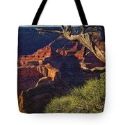 Hermit Rest Grand Canyon National Park Tote Bag