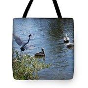 Heron And Pelicans Tote Bag