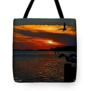 Heron And Seagull Sunset I Mlo Tote Bag