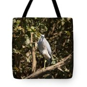 Heron At Katherine Gorge Tote Bag