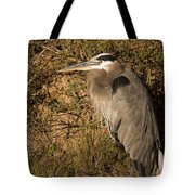 Heron Basking In The Morning Sun Tote Bag