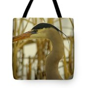 Heron Close Up Tote Bag