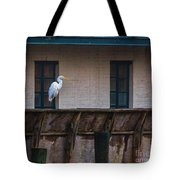 Heron In The Window Tote Bag