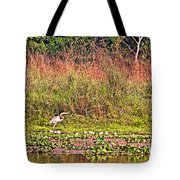 Heron On Shore Of Rapti River In Chitwan Np-nepal  Tote Bag