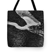 Heron On The Move Up Close Tote Bag