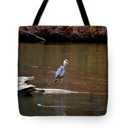 Heron Talking Tote Bag