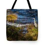 Heron Watchful Eye Tote Bag