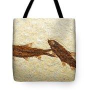 Herring Fish Fossil Tote Bag
