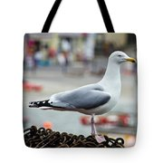 Herring Gull At The Harbour Tote Bag