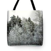 Hersey Lake Under Snow Tote Bag