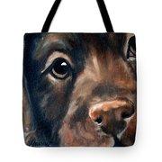 Hershey Tote Bag