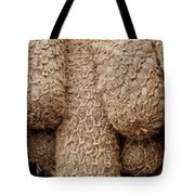 Hessian Boat Bumpers Tote Bag