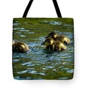 Hey Guys - What's That Tote Bag
