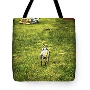 Hey Kids - The Bus Is Here Tote Bag