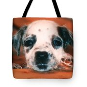 Dalmatian Sweetpuppy Tote Bag