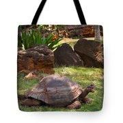 Hey - What About Me Tote Bag