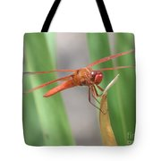 Hi Dragon Fly Tote Bag