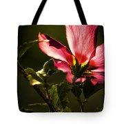 Hibiscus 03 Tote Bag