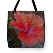 Hibiscus 1 Tote Bag