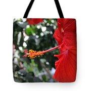 Hibiscus 2685 Tote Bag