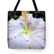 Hibiscus 41 Tote Bag