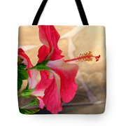 Hibiscus Along The Walk Way Tote Bag