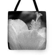Hibiscus Bw Tote Bag
