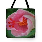 Hibiscus Flower Blooming Tote Bag
