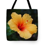 Hibiscus Flower In Puerto Rico Tote Bag