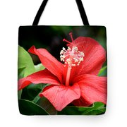 Hibiscus Le'a - A Large Red Hibiscus Flower Bloom Tote Bag