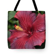 Hibiscus Night Fire 2 Of 2 Tote Bag