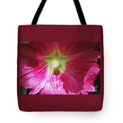A Hibiscus Discovered On Boston Common Tote Bag