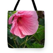 Hibiscus Profile Tote Bag