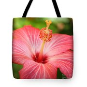 Hibiscus - Square Tote Bag by Carol Groenen