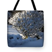 Hibiskus In The Wintertime Tote Bag