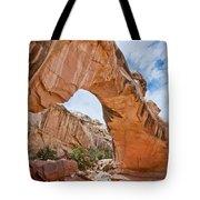 Hickman Bridge Natural Arch Tote Bag