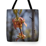 Hickory Bloom Tote Bag