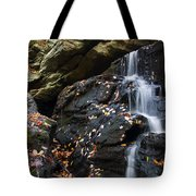 Hidden Falls 1 Tote Bag