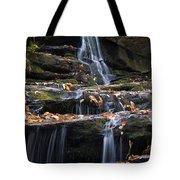 Hidden Falls 3 Tote Bag