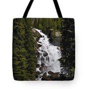 Hidden Falls Jenny Lake Tote Bag