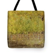 Hidden Fence Tote Bag