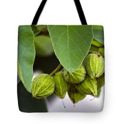 Hidden Fruit Tote Bag