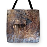 Hidden In The Trees Tote Bag