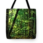 Hidden Places Tote Bag