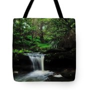 Hidden Rainforest Tote Bag