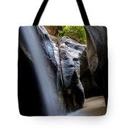 Hidden Splendor Tote Bag