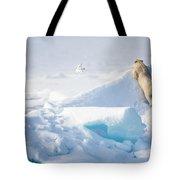 Hide And Seek, Ursus Maritimes, Fulmars Tote Bag