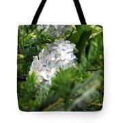 Hiding Hydrangea Tote Bag